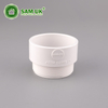 2 Inch Plastic Schedule 40 PVC Threaded Adapter for Water Drain